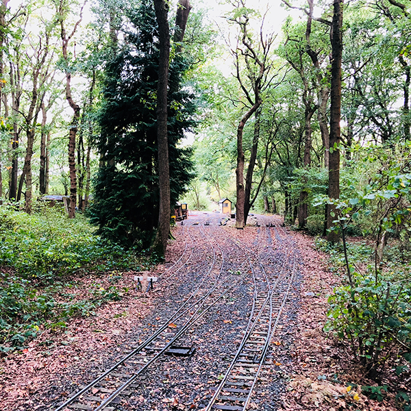 Woodlands, with accessible pathways